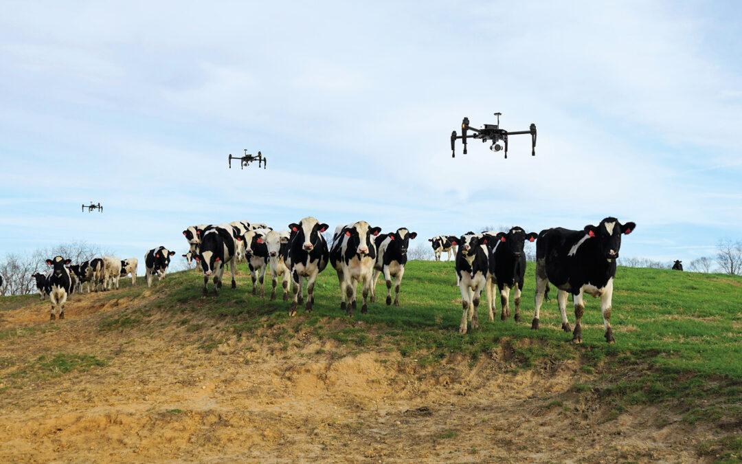 Cowboy de drone