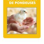 Nouveau dépliant – L'élevage à petite échelle de poulettes et de pondeuses